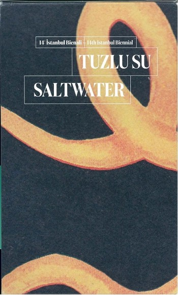 Saltwater:A Theory of Thought Forms 14th Istanbul Biennial, 2015