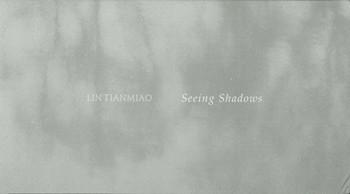 Lin Tianmiao: Seeing Shadows