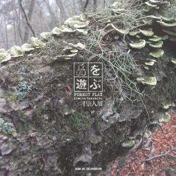 Forest Play: Kimura Takahito