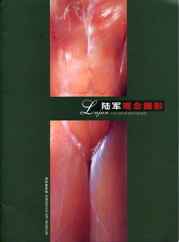 Lujun Conceptual Photography