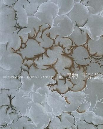 Tzu Yun Wang: Corps Etranger 2005