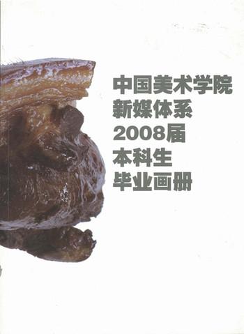 2008 Undergraduates' Works: New Media Art Department China Academy of Art