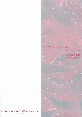 The Rose Eternal: Timeless encounters in the photography of Miyako Ishiuchi