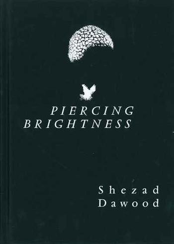 Shezad Dawood: Piercing Brightness