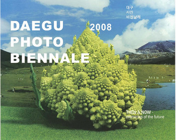 Daegu Photo Biennale 2008:  Then & Now - Memories of the Future