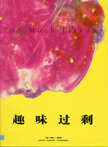 Too Much Flavour: An Exhibition of Contemporary Chinese Art