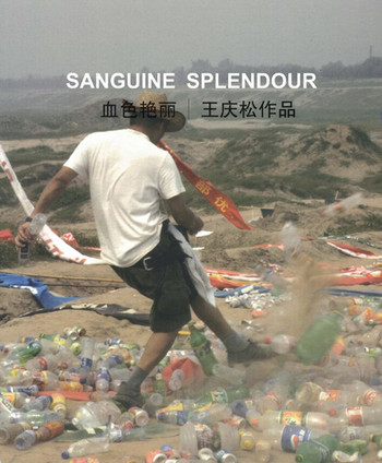 Sanguine Splendour: Wang Qingsong Works