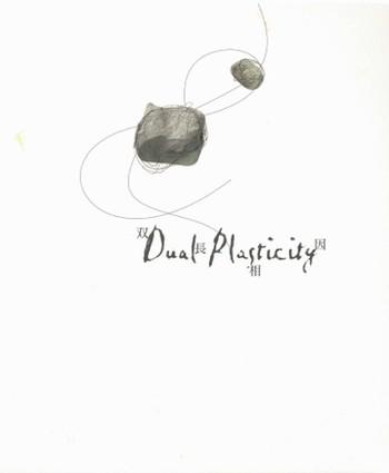 Dual Plasticity