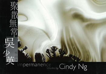 Impermanence: Works by Cindy Ng