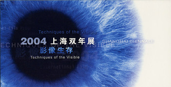 Shanghai Biennale 2004: Techniques of the Visible