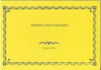 Zhao Renhui: Horses and Canaries