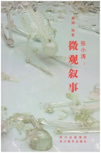 (Zhang Xiaotao: Microscopic Narration)