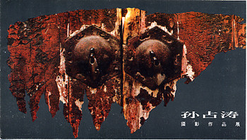 Sun Zhantao Photo Art Exhibition - A Series of Door and Wall