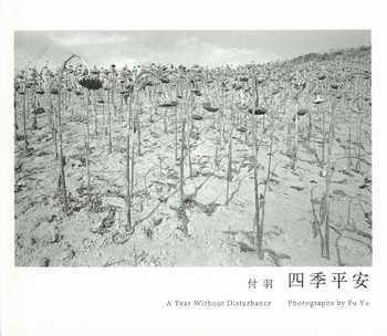 A Year without Disturbance: Photographs by Fu Yu