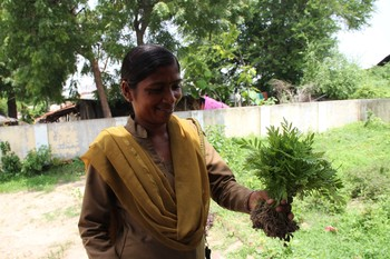 Image: Forestry Department representative in Wadhwana offering saplings for planting. For the art+ecology project <i>Negotiating Routes: Ecologies of the Byways</i>, at the first location NR1: Wadhwana, 2010–12. Photo: Varsha Nair.
