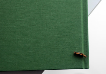 Image: Book and worm. Photo: Zheng Bo.