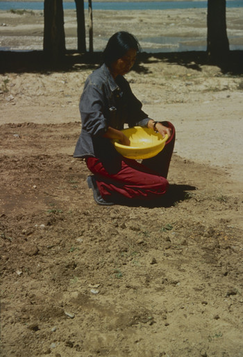Image: Zhang Xin, <i>Sowing</i>, 1996, performance, Lhasa. Betsy Damon Archive, Asia Art Archive Collection. Courtesy of the artist and Betsy Damon.