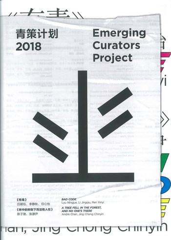 Emerging Curators Project 2018