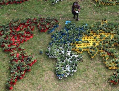 Another view of Nous ne notons pas les fleurs, Fort Ruigenhoek