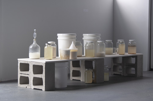 Image: Tiffany Jaeyeon Shin, <i>Untitled (Lactic Acid Brew)</i>, 2018, wood, cinder blocks, glass jars, mason jars, food grade container, funnel, homebrewed lactic acid. Courtesy of the artist.