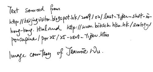 fieldnotes04-editors-13.jpg
