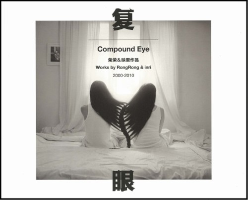Compound Eye: Works by RongRong & inri (2000-2010)