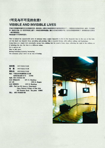 Image and Phenomena — Artist Profile and Exhibited Artworks of Gao Shiqiang, Lu Lei and Gao Shiming