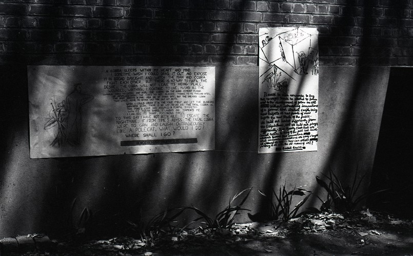 Questions and Dialogue, 1987