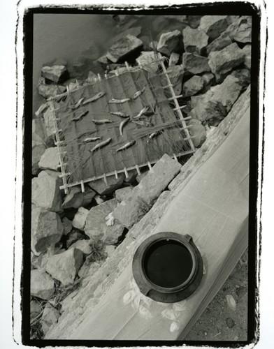 Water Burial