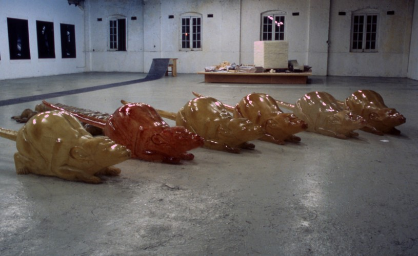 Mouse (Exhibition View)