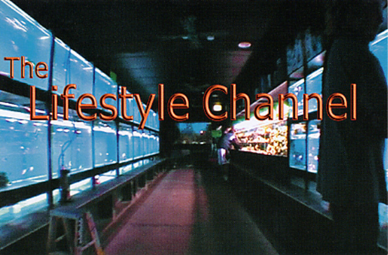 The Lifestyle Channel
